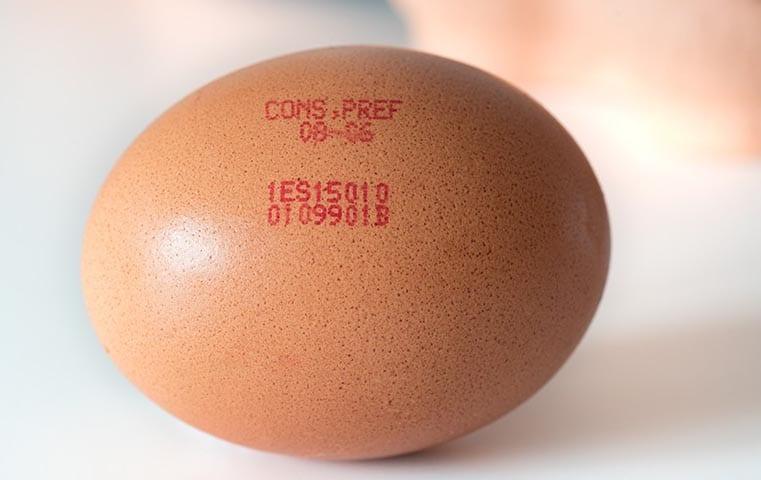 leibinger egg printer 5 1